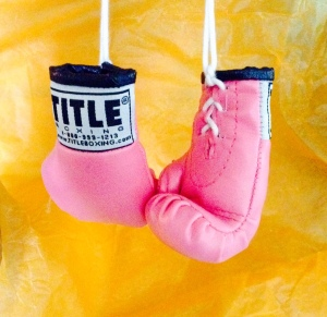 The tiny pink boxing gloves a kind person gifted to me hold a strange fascination for me.