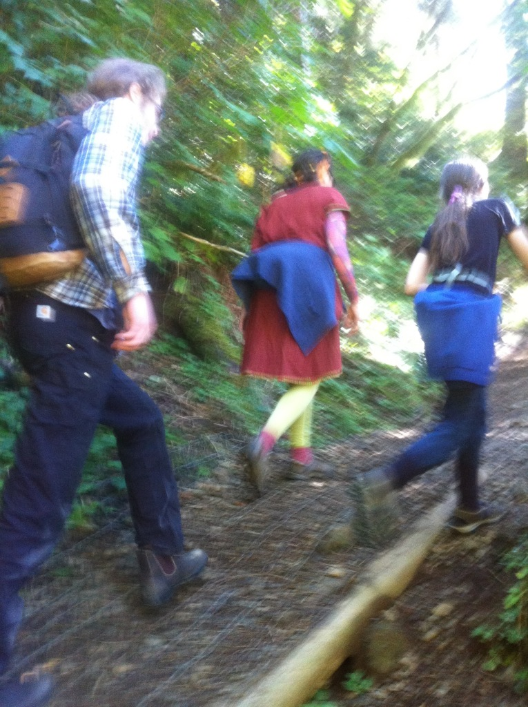 Hiking saddle mountain for Martin's Birthday 2015 - note my super compression sleeve.